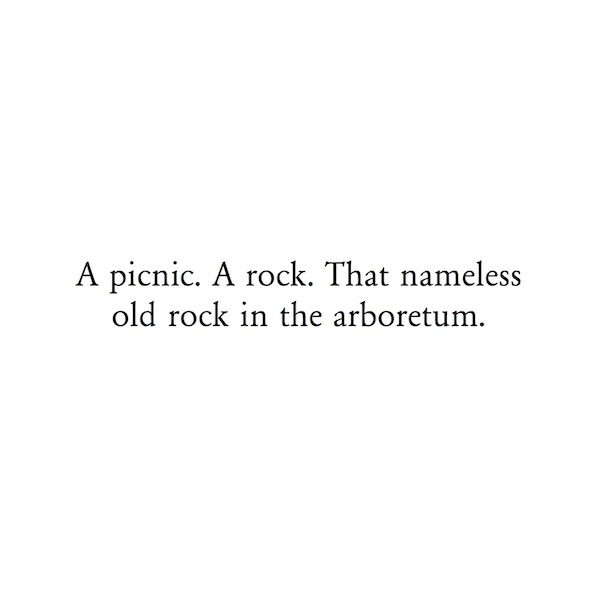 A picnic. A rock. That nameless old rock in the arboretum.